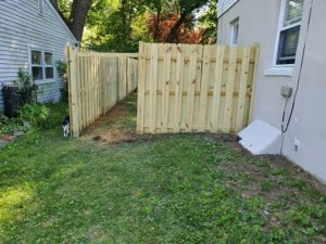 Fence in yard
