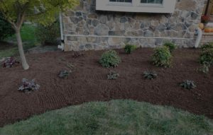 Mulching and lawn mowing